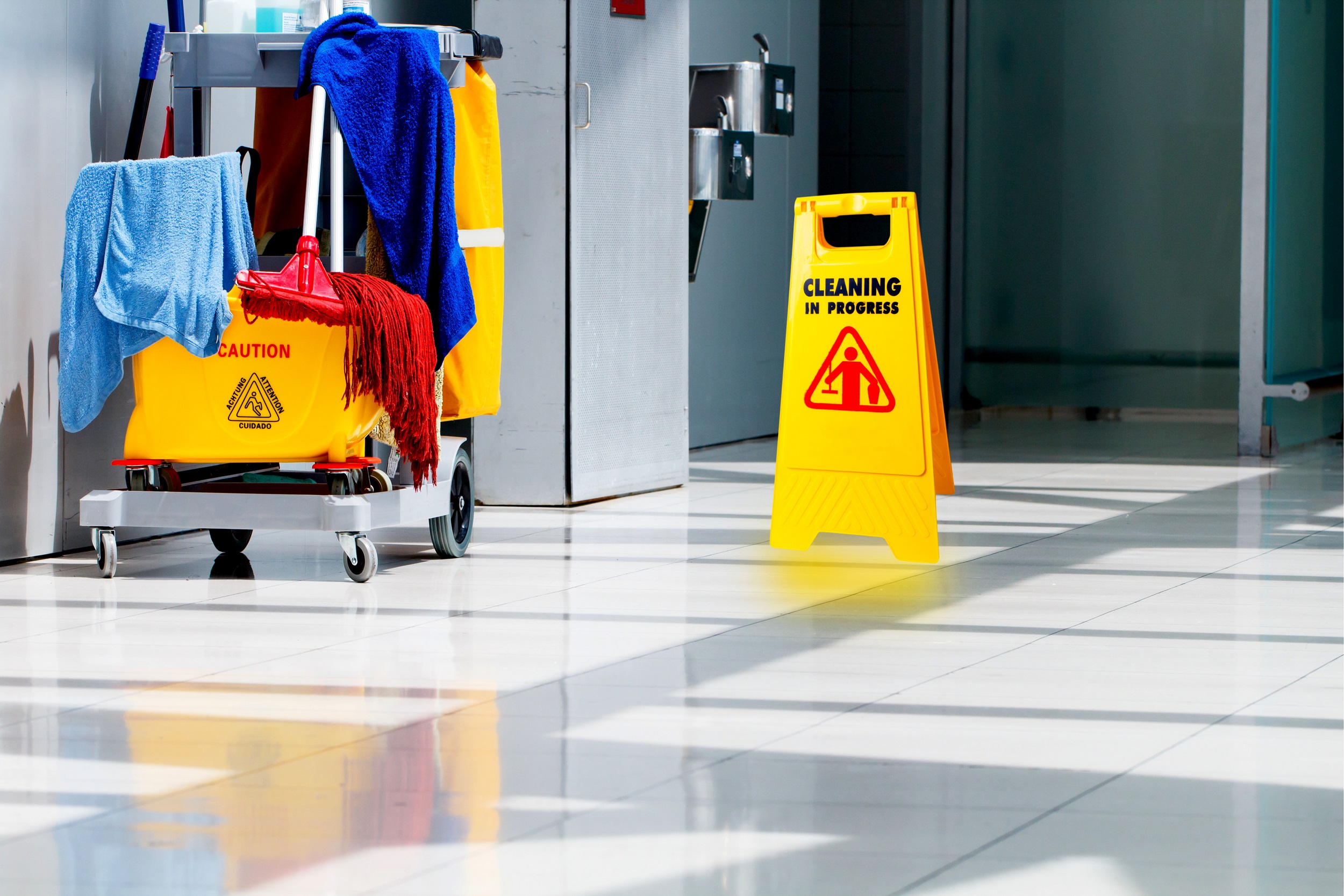 City Cleaning & Janitorial Services